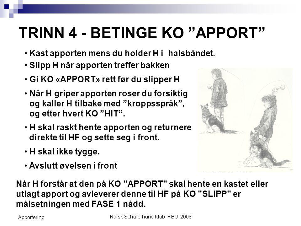 """Norsk Schäferhund Klub HBU 2008 Apportering TRINN 4 - BETINGE KO """"APPORT"""" Slipp H når apporten treffer bakken Gi KO «APPORT» rett før du slipper H Når"""