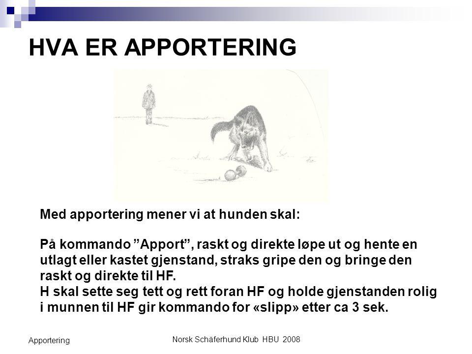 """Norsk Schäferhund Klub HBU 2008 Apportering HVA ER APPORTERING Med apportering mener vi at hunden skal: På kommando """"Apport"""", raskt og direkte løpe ut"""