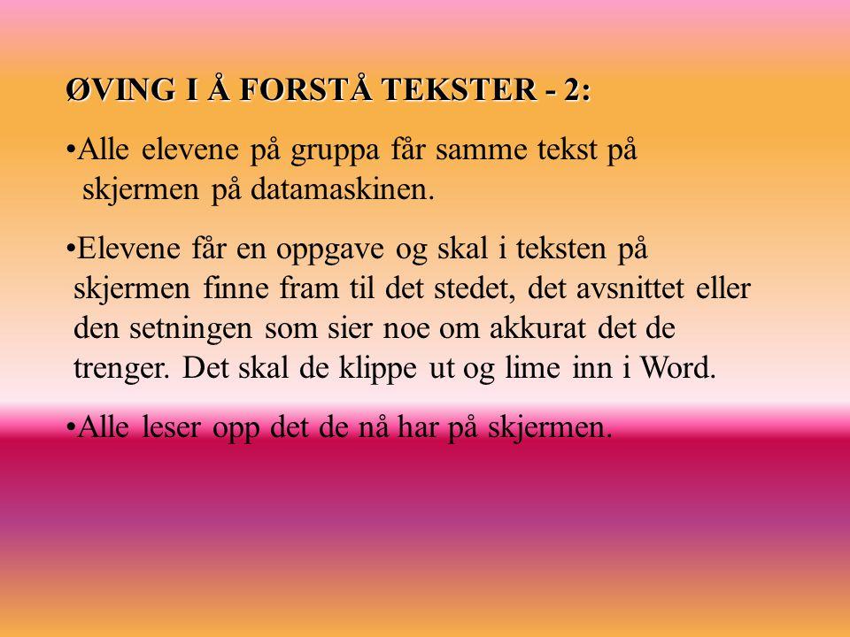 ØVING I Å FORSTÅ TEKSTER - 2: Alle elevene på gruppa får samme tekst på skjermen på datamaskinen.