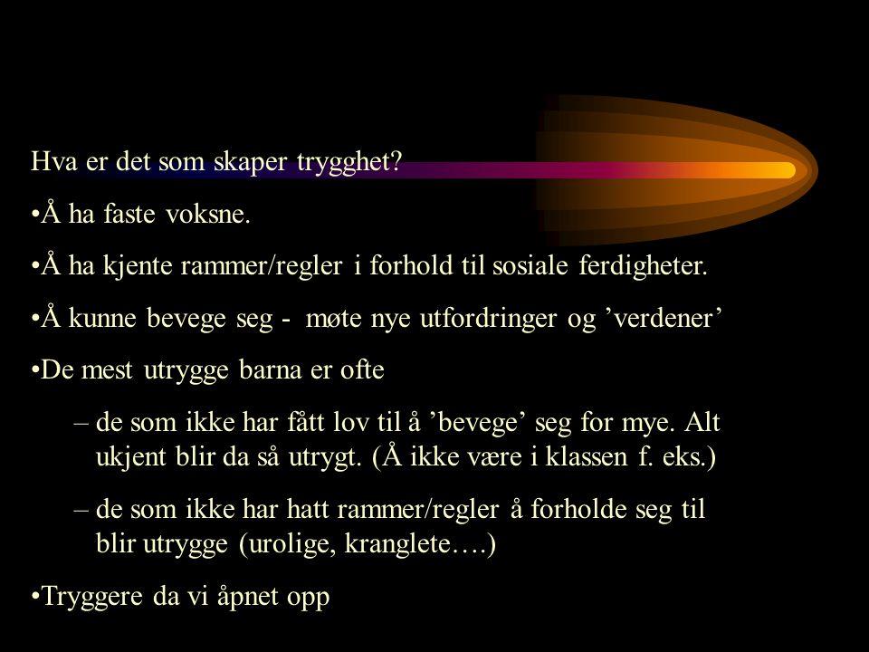 Elev Kanal 1 Portfolio Fullriggaren Malevik