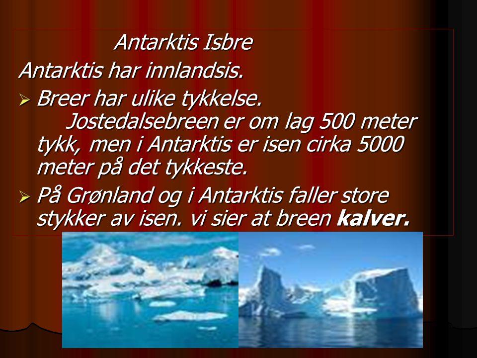 Antarktis Isbre Antarktis har innlandsis.  Breer har ulike tykkelse. Jostedalsebreen er om lag 500 meter tykk, men i Antarktis er isen cirka 5000 met