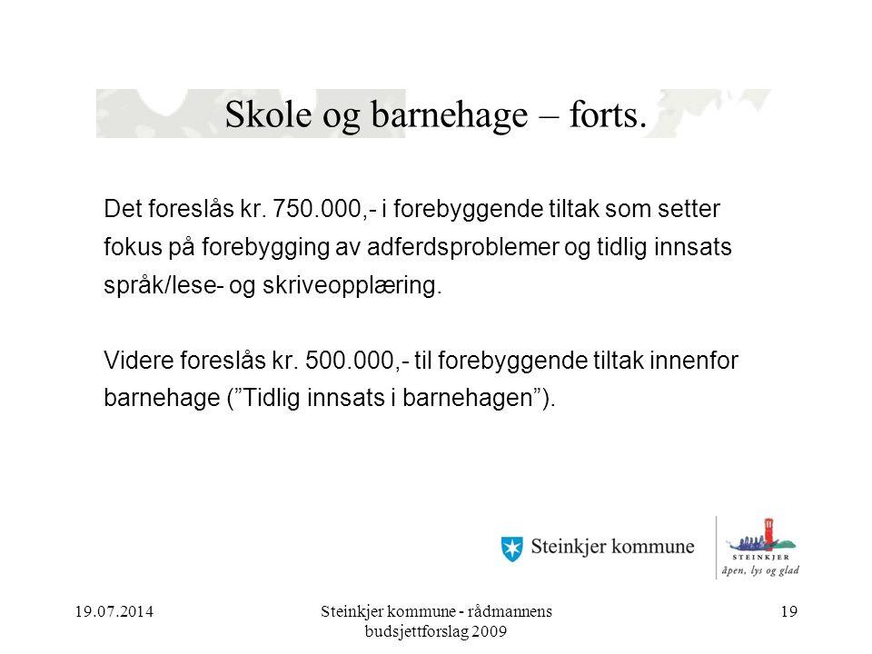 19.07.2014Steinkjer kommune - rådmannens budsjettforslag 2009 19 Skole og barnehage – forts.