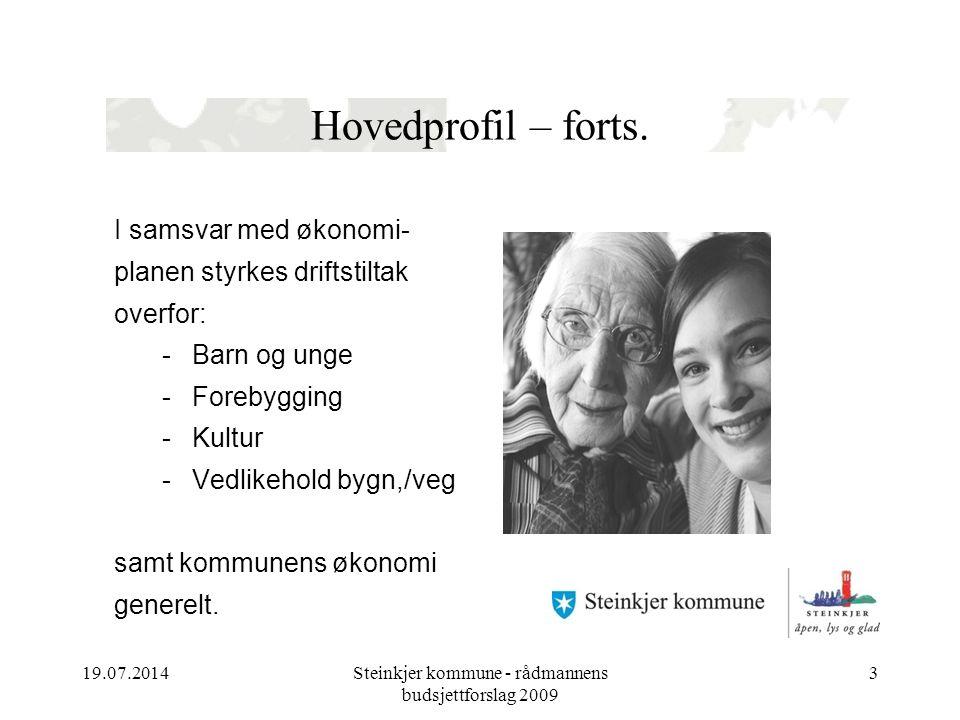 19.07.2014Steinkjer kommune - rådmannens budsjettforslag 2009 3 Hovedprofil – forts.