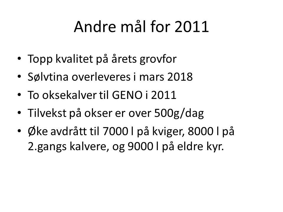 Andre mål for 2011 Topp kvalitet på årets grovfor Sølvtina overleveres i mars 2018 To oksekalver til GENO i 2011 Tilvekst på okser er over 500g/dag Øk