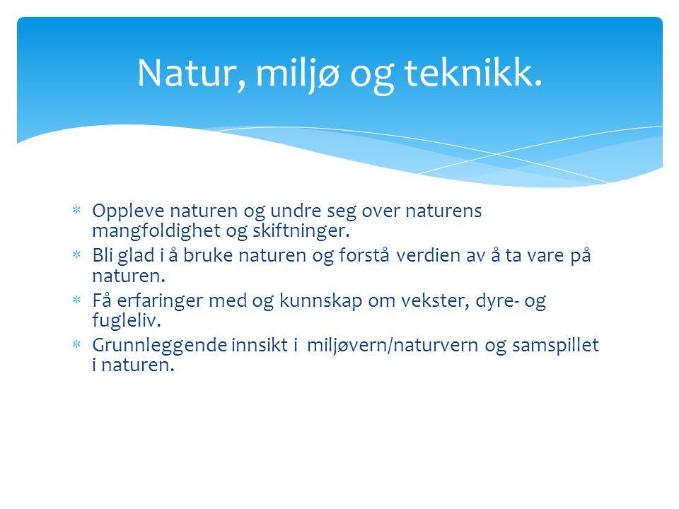  Oppleve naturen og undre seg over naturens mangfoldighet og skiftninger.  Bli glad i å bruke naturen og forstå verdien av å ta vare på naturen.  F