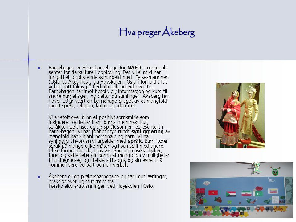 Hva preger Åkeberg Barnehagen er Fokusbarnehage for NAFO – nasjonalt senter for flerkulturell opplæring. Det vil si at vi har inngått et forpliktende