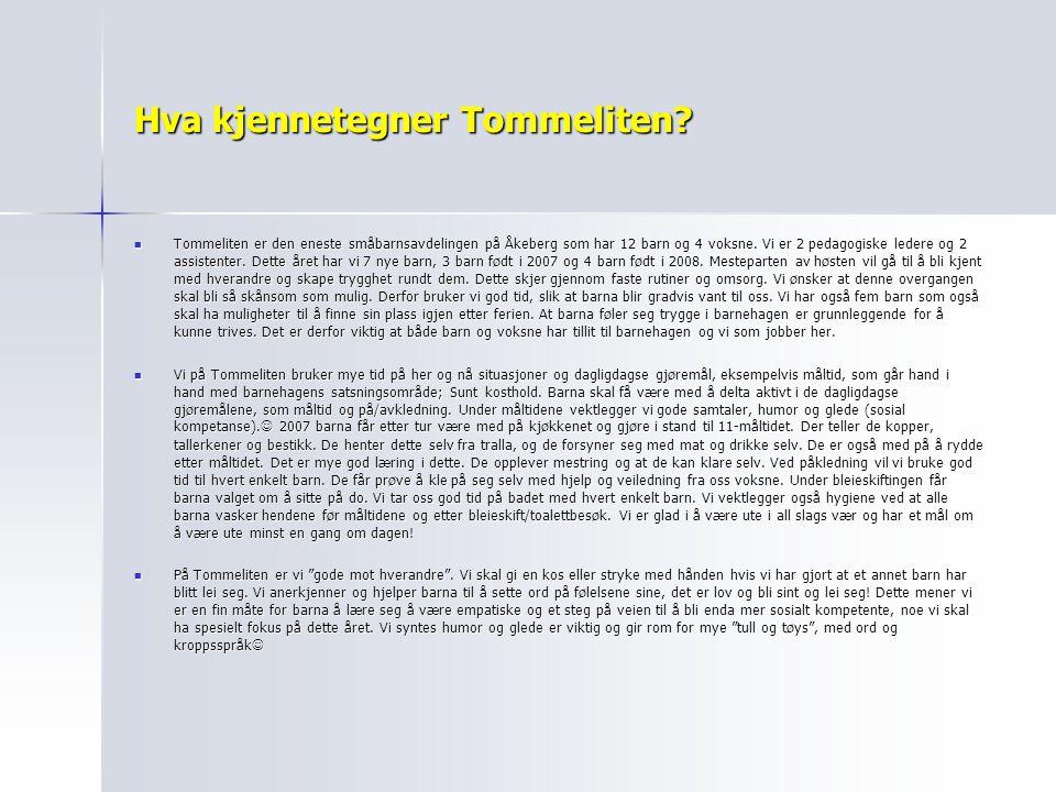 Hva kjennetegner Tommeliten? Tommeliten er den eneste småbarnsavdelingen på Åkeberg som har 12 barn og 4 voksne. Vi er 2 pedagogiske ledere og 2 assis