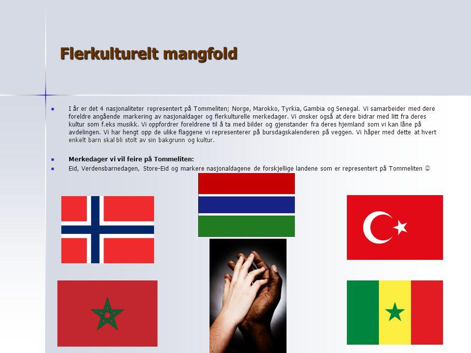 Flerkulturelt mangfold Vi håper med dette at hvert enkelt barn skal bli stolt av sin bakgrunn og kultur. I år er det 4 nasjonaliteter representert på