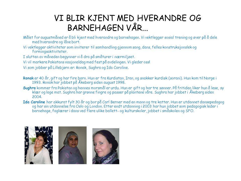 Tema: GOD SOMMER! MandagTirsdagOnsdagTorsdagFredagLørdagSøndag 123456 Svenska flaggans dag.