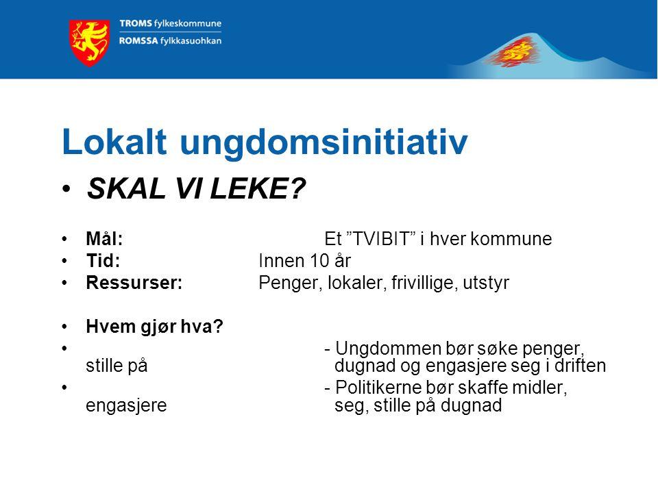 Lokalt ungdomsinitiativ SKAL VI LEKE.