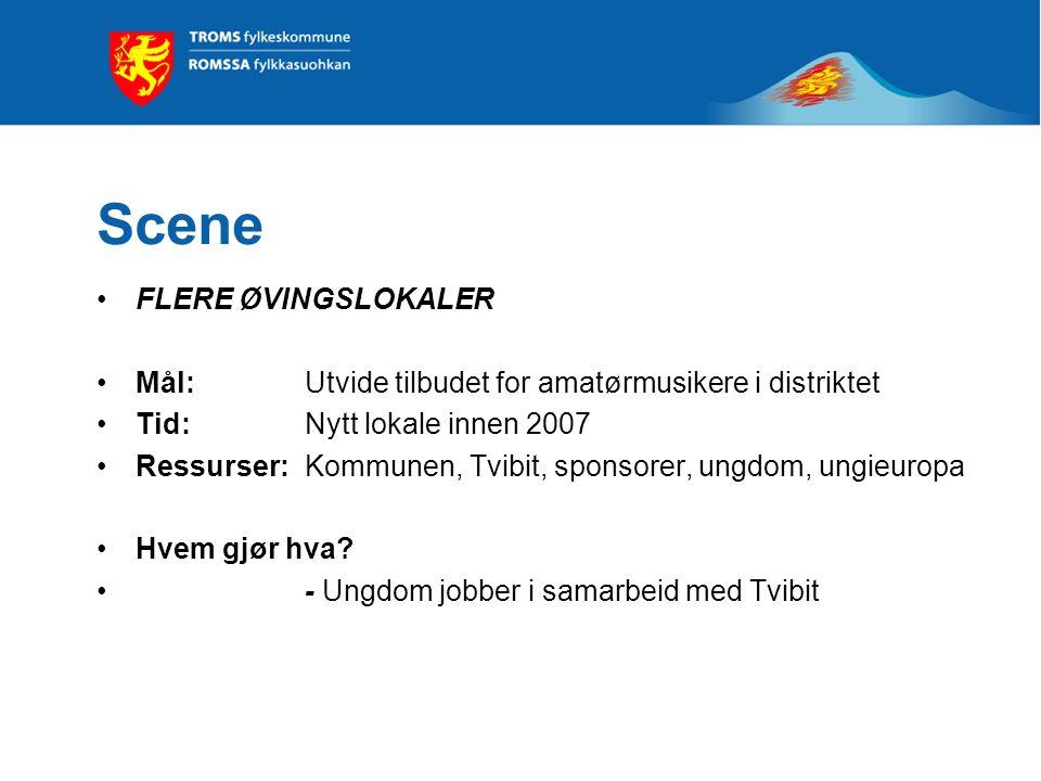 Scene FLERE ØVINGSLOKALER Mål: Utvide tilbudet for amatørmusikere i distriktet Tid: Nytt lokale innen 2007 Ressurser: Kommunen, Tvibit, sponsorer, ungdom, ungieuropa Hvem gjør hva.