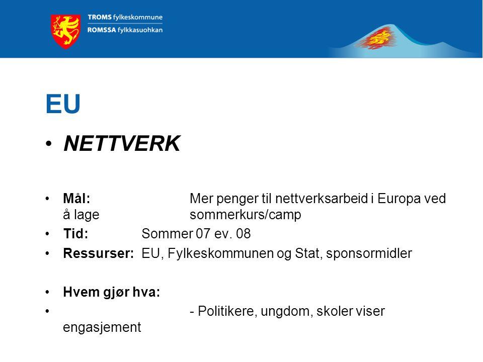 EU NETTVERK Mål: Mer penger til nettverksarbeid i Europa ved å lage sommerkurs/camp Tid: Sommer 07 ev.