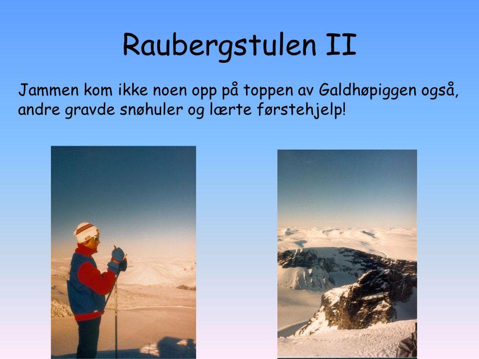 Raubergstulen II Jammen kom ikke noen opp på toppen av Galdhøpiggen også, andre gravde snøhuler og lærte førstehjelp!