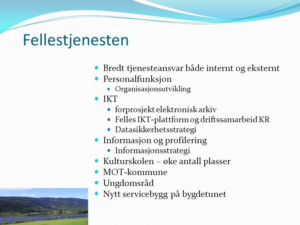 Fellestjenesten Bredt tjenesteansvar både internt og eksternt Personalfunksjon Organisasjonsutvikling IKT forprosjekt elektronisk arkiv Felles IKT-pla