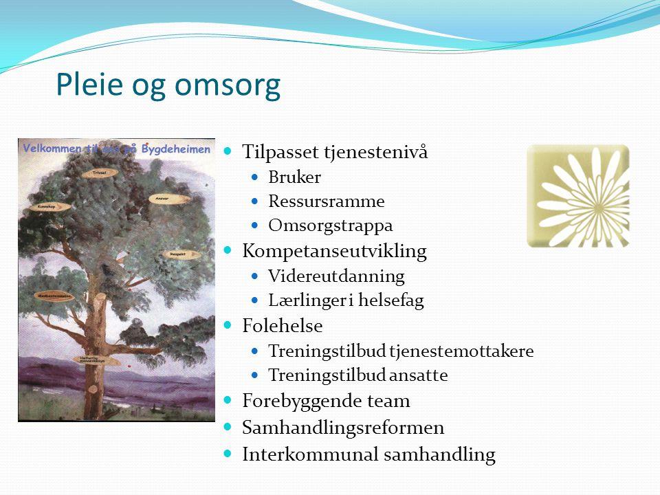 Pleie og omsorg Tilpasset tjenestenivå Bruker Ressursramme Omsorgstrappa Kompetanseutvikling Videreutdanning Lærlinger i helsefag Folehelse Treningsti