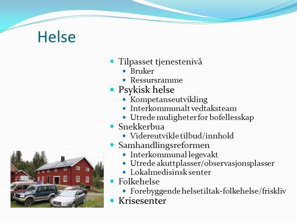Helse Tilpasset tjenestenivå Bruker Ressursramme Psykisk helse Kompetanseutvikling Interkommunalt vedtaksteam Utrede muligheter for bofellesskap Snekk
