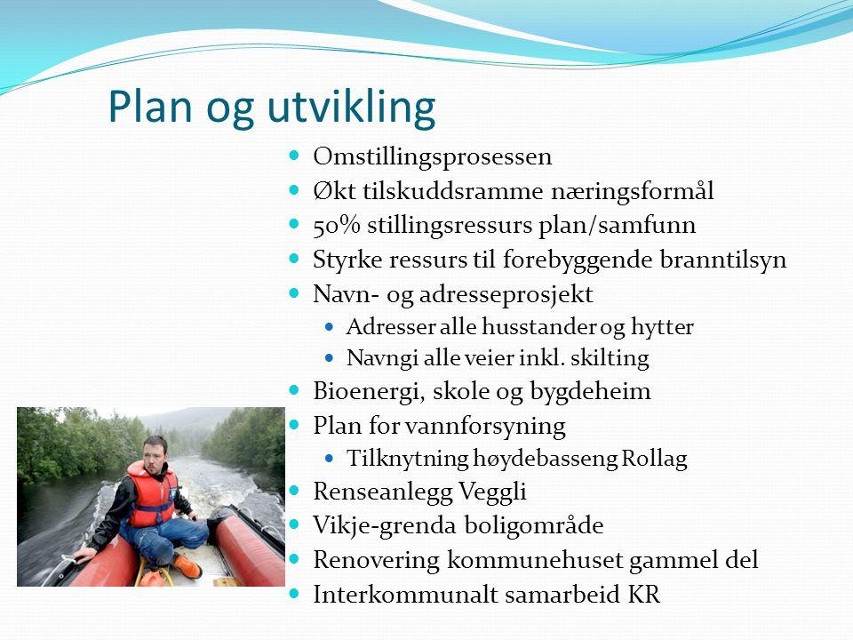 Plan og utvikling Omstillingsprosessen Økt tilskuddsramme næringsformål 50% stillingsressurs plan/samfunn Styrke ressurs til forebyggende branntilsyn