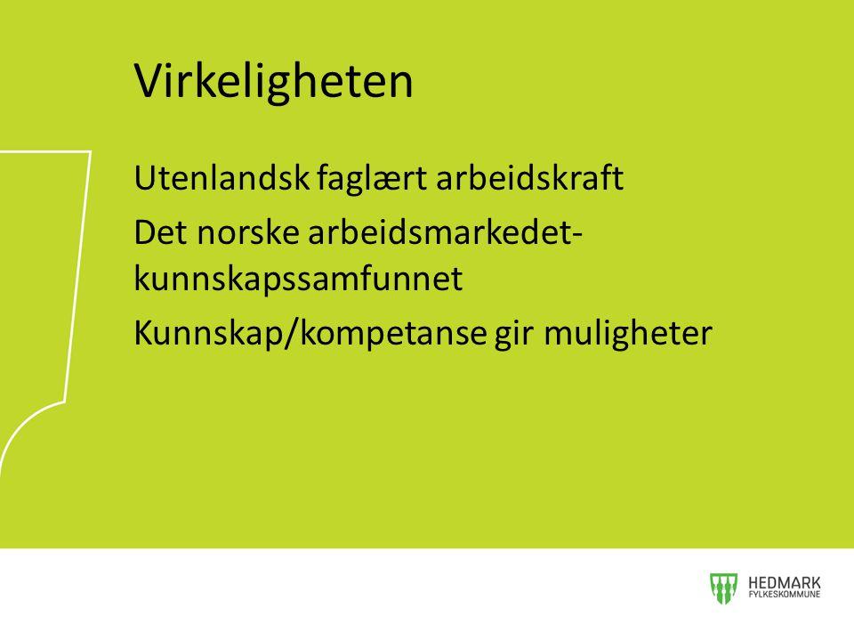 Utenlandsk faglært arbeidskraft Det norske arbeidsmarkedet- kunnskapssamfunnet Kunnskap/kompetanse gir muligheter Virkeligheten