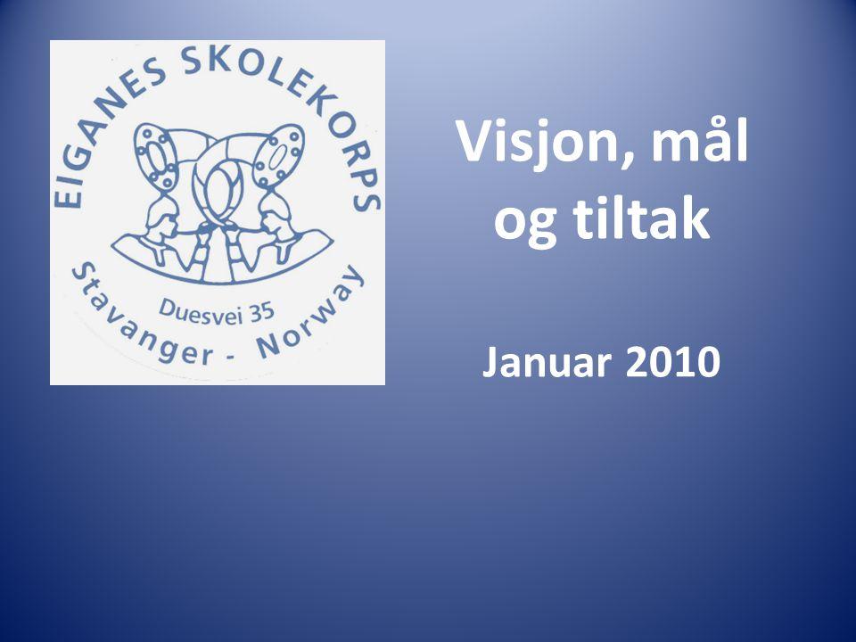 Visjon, mål og tiltak Januar 2010