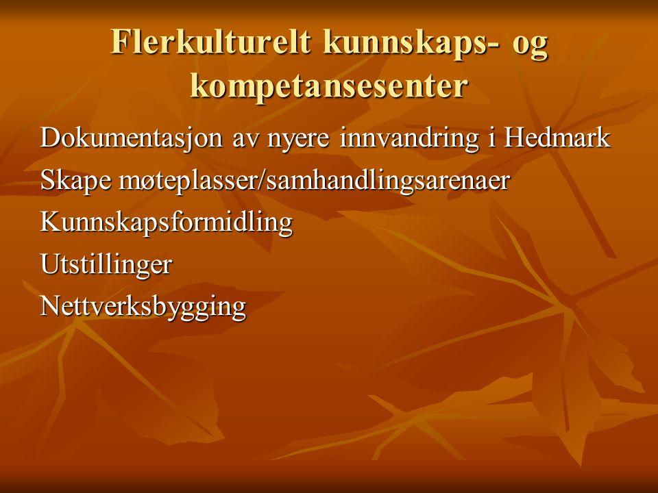 Flerkulturelt kunnskaps- og kompetansesenter Dokumentasjon av nyere innvandring i Hedmark Skape møteplasser/samhandlingsarenaer KunnskapsformidlingUtstillingerNettverksbygging
