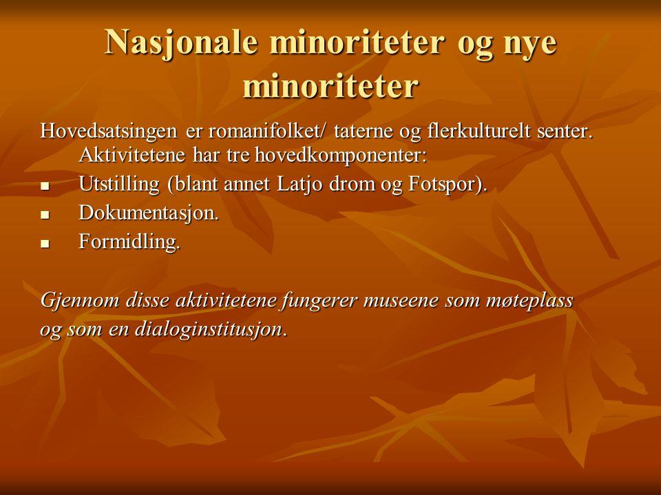 Nasjonale minoriteter og nye minoriteter Hovedsatsingen er romanifolket/ taterne og flerkulturelt senter.
