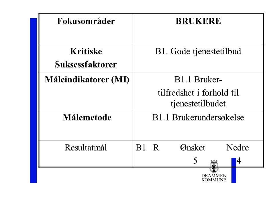 FokusområderBRUKERE Kritiske Suksessfaktorer B1.