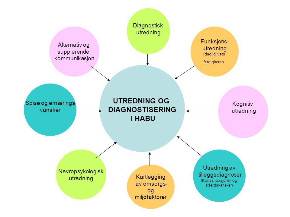 UTREDNING OG DIAGNOSTISERING I HABU Diagnostisk utredning Kognitiv utredning Kartlegging av omsorgs- og miljøfaktorer Utredning av tilleggsdiagnoser (