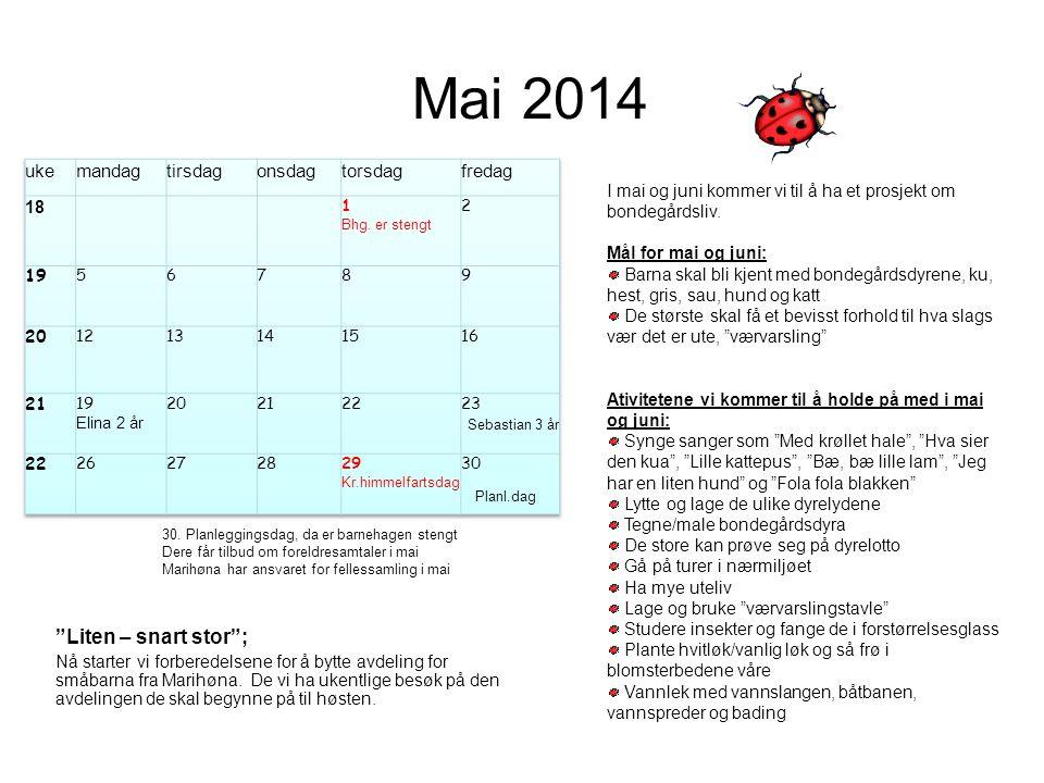 """Mai 2014 Planl.dag """"Liten – snart stor""""; Nå starter vi forberedelsene for å bytte avdeling for småbarna fra Marihøna. De vi ha ukentlige besøk på den"""