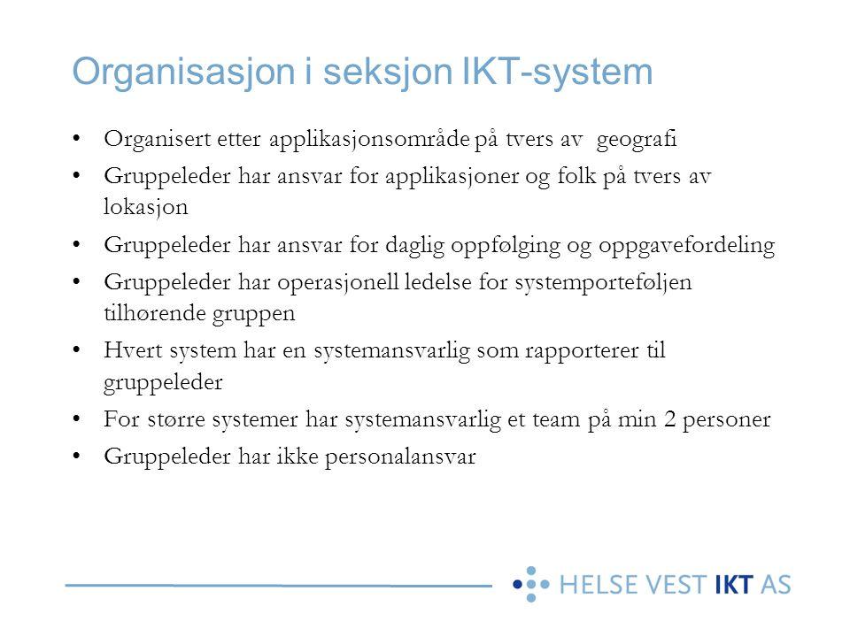 Organisasjon i seksjon IKT-system Organisert etter applikasjonsområde på tvers av geografi Gruppeleder har ansvar for applikasjoner og folk på tvers a