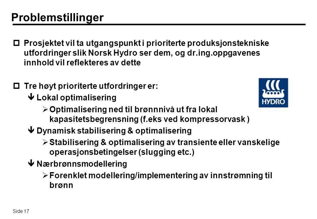 Side 17 Problemstillinger pProsjektet vil ta utgangspunkt i prioriterte produksjonstekniske utfordringer slik Norsk Hydro ser dem, og dr.ing.oppgavene