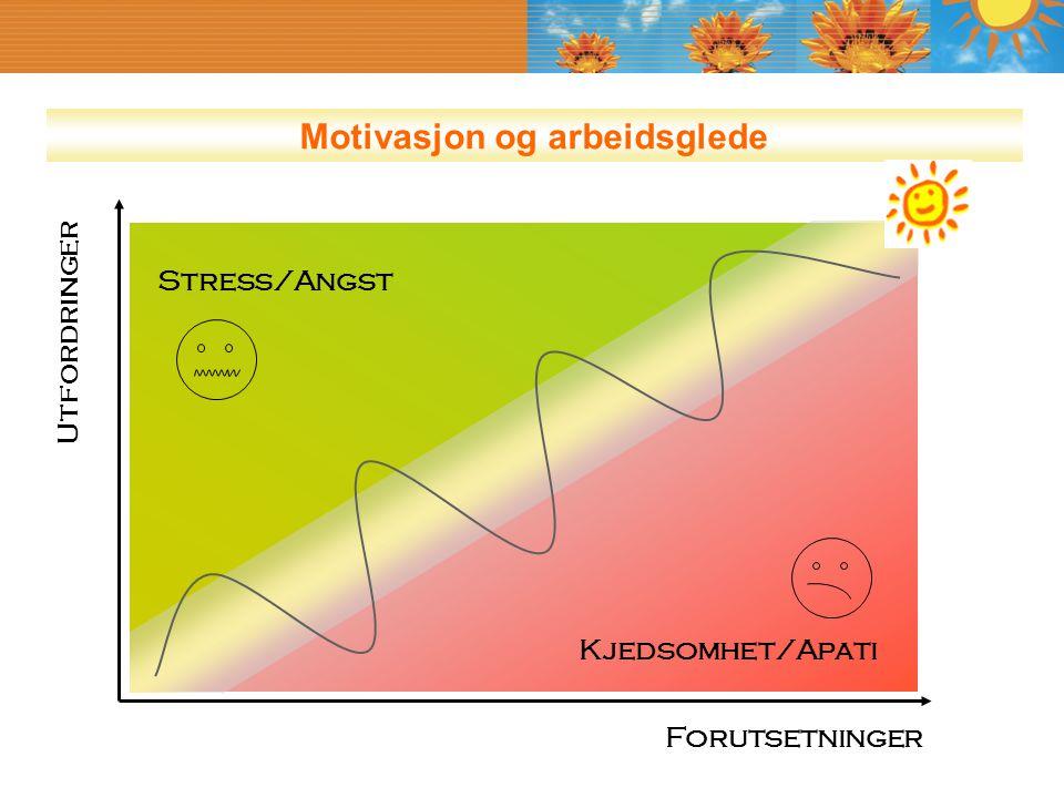 Utfordringer Forutsetninger Stress/Angst Kjedsomhet/Apati Motivasjon og arbeidsglede