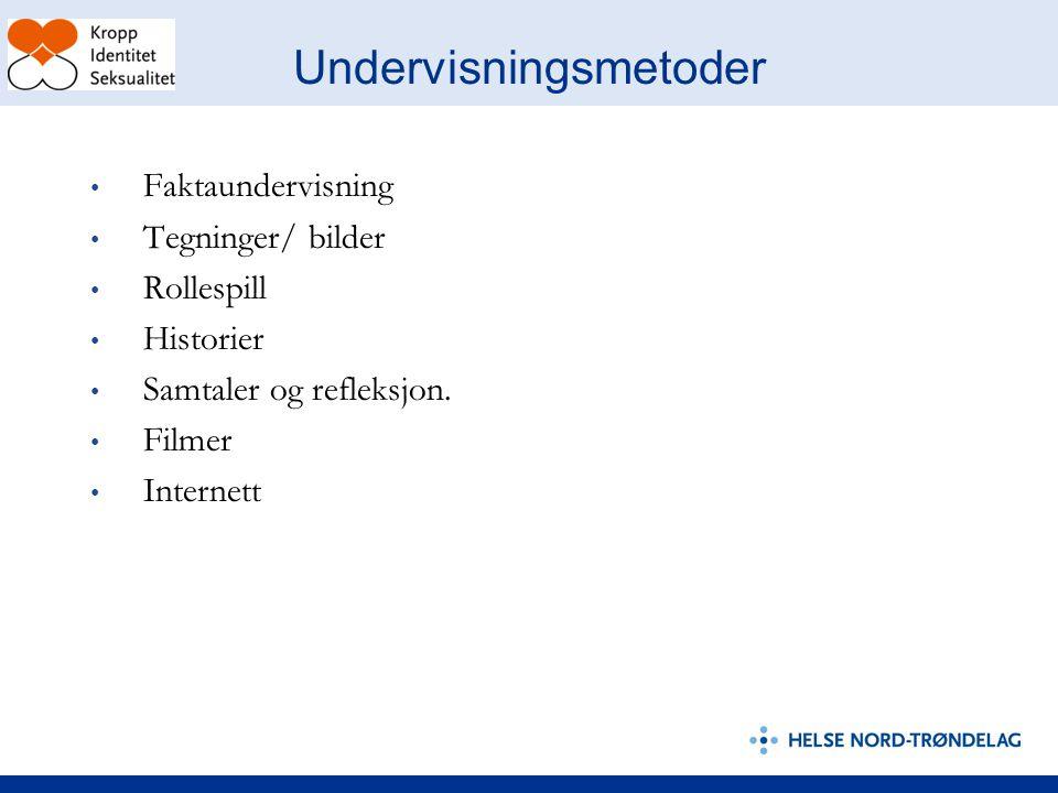 Undervisningsmetoder Faktaundervisning Tegninger/ bilder Rollespill Historier Samtaler og refleksjon.