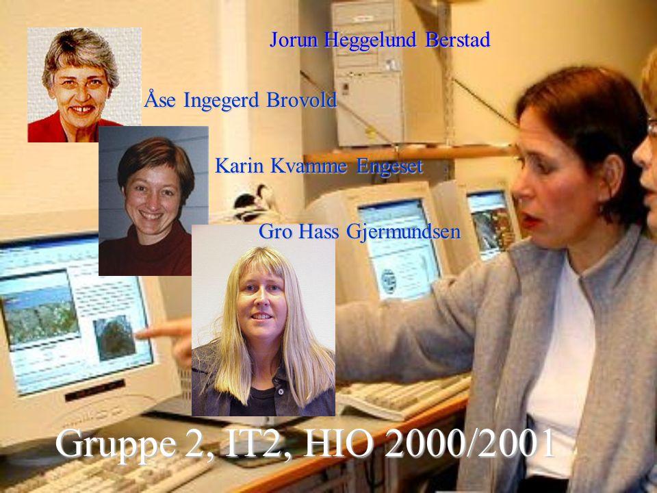 På kryss og tvers i geologien Et læringsmiljø mellom naturen og internett laget av Jorun Heggelund Berstad, Åse Ingegerd Brovold, Karin Kvamme Engeset og Gro Hass Gjermundsen Prosjektoppgave 2001, IT for lærere 2, Høgskolen i Oslo Eit ord - ein stein i ei kald elv.