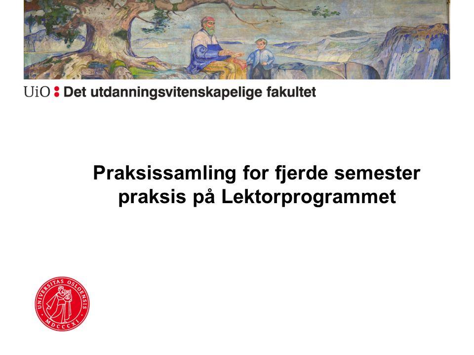 Praksissamling for fjerde semester praksis på Lektorprogrammet