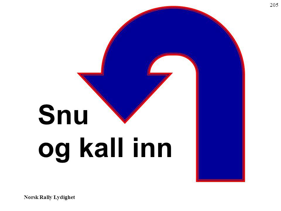 Norsk Rally Lydighet Snu og kall inn 205