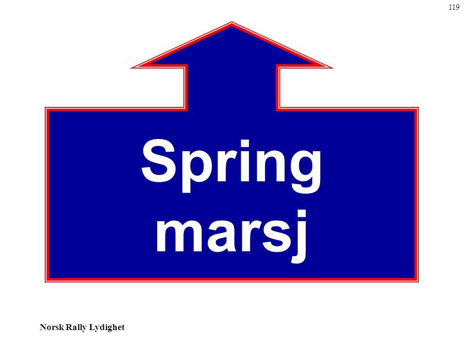 Norsk Rally Lydighet Spring marsj 119