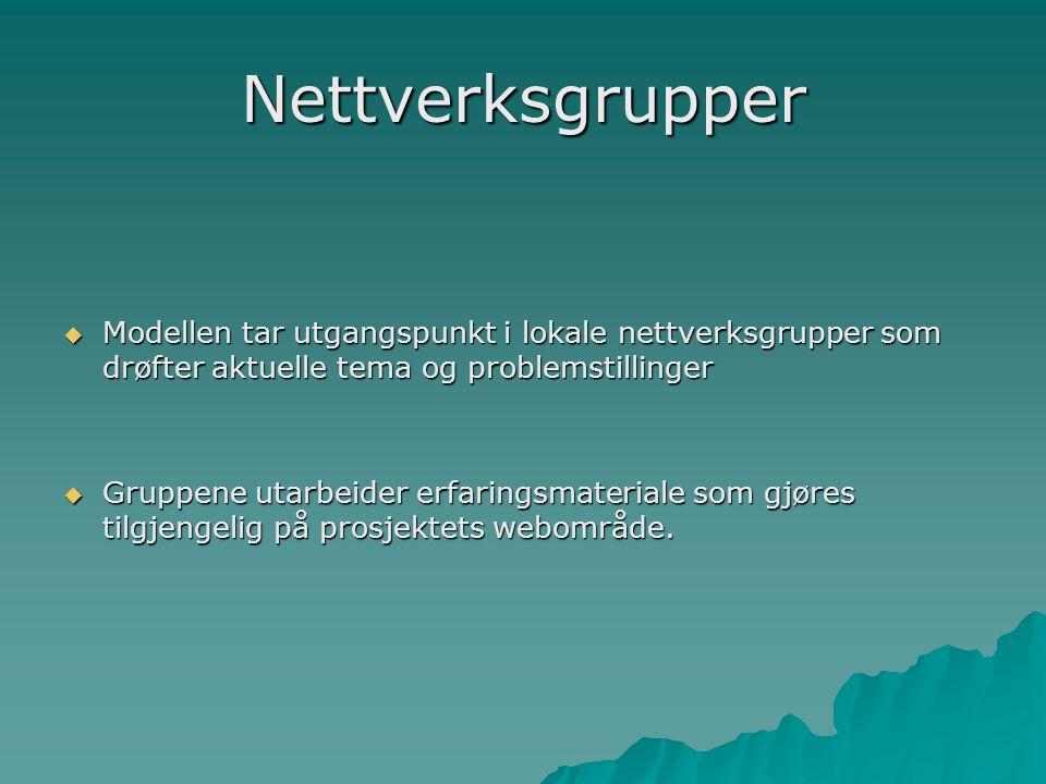 Nettverksgrupper  Modellen tar utgangspunkt i lokale nettverksgrupper som drøfter aktuelle tema og problemstillinger  Gruppene utarbeider erfaringsm