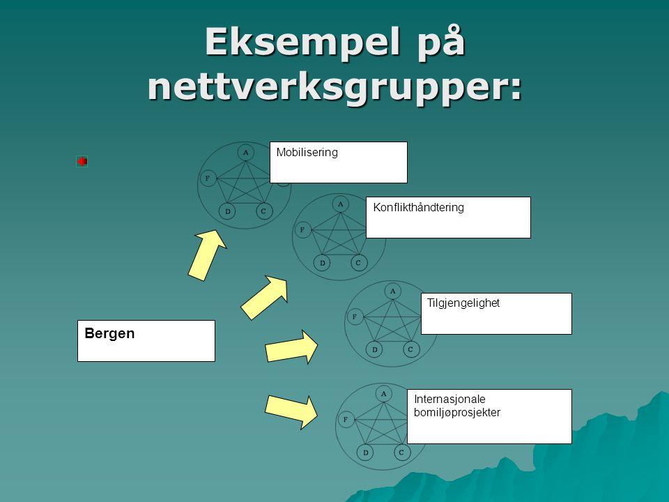 Eksempel på nettverksgrupper: Bergen Mobilisering Konflikthåndtering Tilgjengelighet Internasjonale bomiljøprosjekter