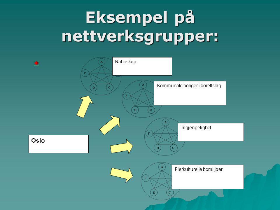 Eksempel på nettverksgrupper: Oslo Naboskap Kommunale boliger i borettslag Tilgjengelighet Flerkulturelle bomiljøer