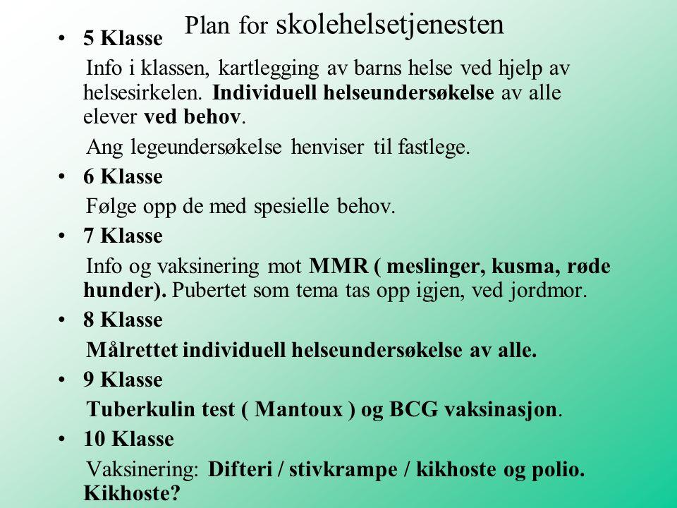 Plan for skolehelsetjenesten 5 Klasse Info i klassen, kartlegging av barns helse ved hjelp av helsesirkelen. Individuell helseundersøkelse av alle ele