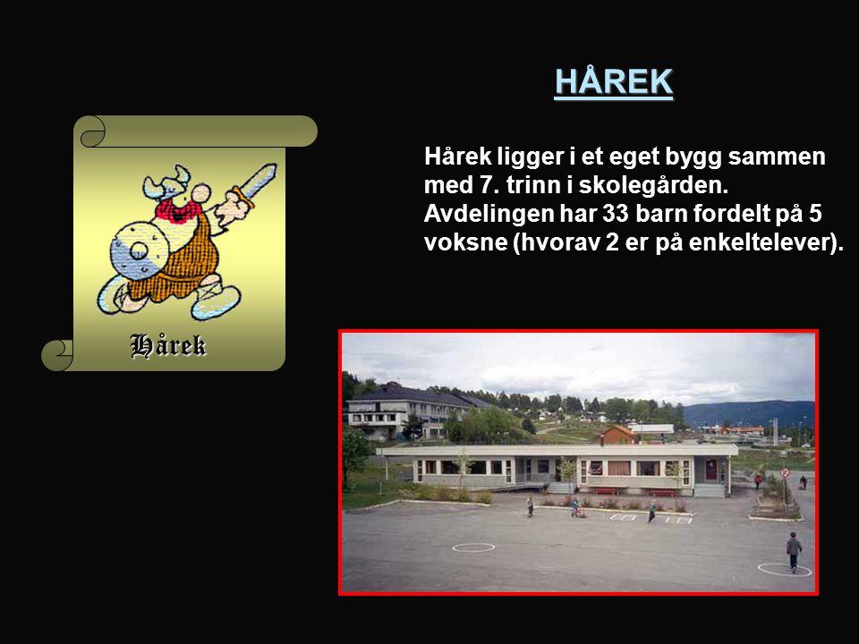 HÅREK HÅREK Hårek ligger i et eget bygg sammen med 7.