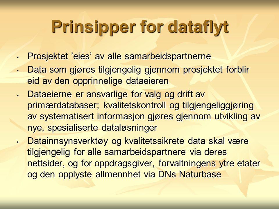 Prinsipper for dataflyt Prosjektet 'eies' av alle samarbeidspartnerne Prosjektet 'eies' av alle samarbeidspartnerne Data som gjøres tilgjengelig gjennom prosjektet forblir eid av den opprinnelige dataeieren Data som gjøres tilgjengelig gjennom prosjektet forblir eid av den opprinnelige dataeieren Dataeierne er ansvarlige for valg og drift av primærdatabaser; kvalitetskontroll og tilgjengeliggjøring av systematisert informasjon gjøres gjennom utvikling av nye, spesialiserte dataløsninger Dataeierne er ansvarlige for valg og drift av primærdatabaser; kvalitetskontroll og tilgjengeliggjøring av systematisert informasjon gjøres gjennom utvikling av nye, spesialiserte dataløsninger Datainnsynsverktøy og kvalitetssikrete data skal være tilgjengelig for alle samarbeidspartnere via deres nettsider, og for oppdragsgiver, forvaltningens ytre etater og den opplyste allmennhet via DNs Naturbase Datainnsynsverktøy og kvalitetssikrete data skal være tilgjengelig for alle samarbeidspartnere via deres nettsider, og for oppdragsgiver, forvaltningens ytre etater og den opplyste allmennhet via DNs Naturbase