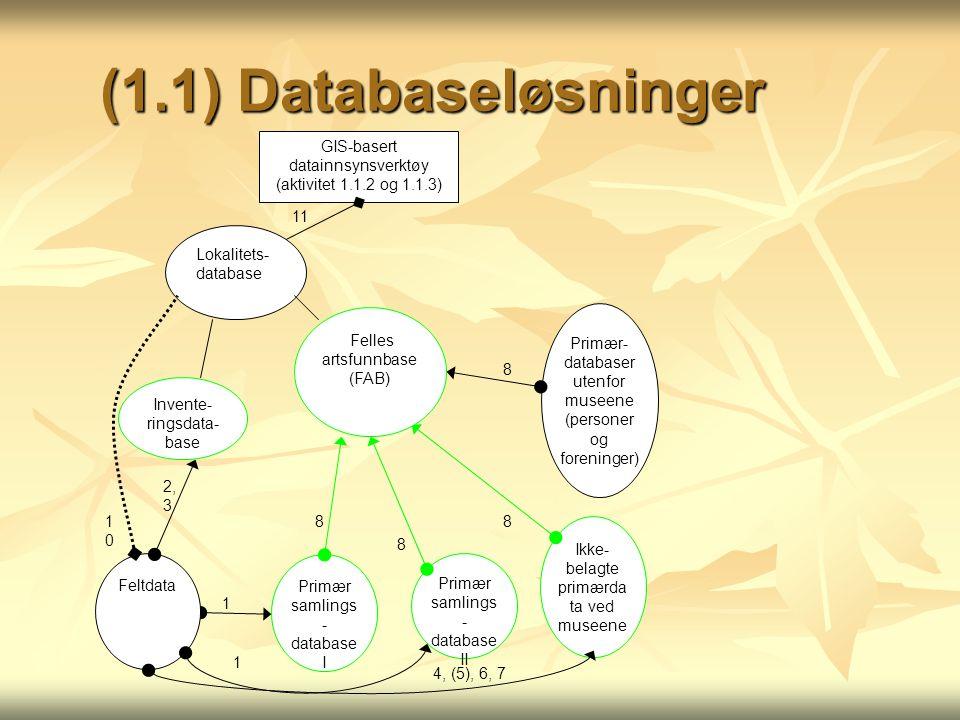 (1.1) Databaseløsninger GIS-basert datainnsynsverktøy (aktivitet 1.1.2 og 1.1.3) Primær samlings - database I Primær samlings - database II Ikke- belagte primærda ta ved museene Primær- databaser utenfor museene (personer og foreninger) Invente- ringsdata- base Felles artsfunnbase (FAB) Feltdata Lokalitets- database 1 1 4, (5), 6, 7 1010 2, 3 8 8 8 11 8