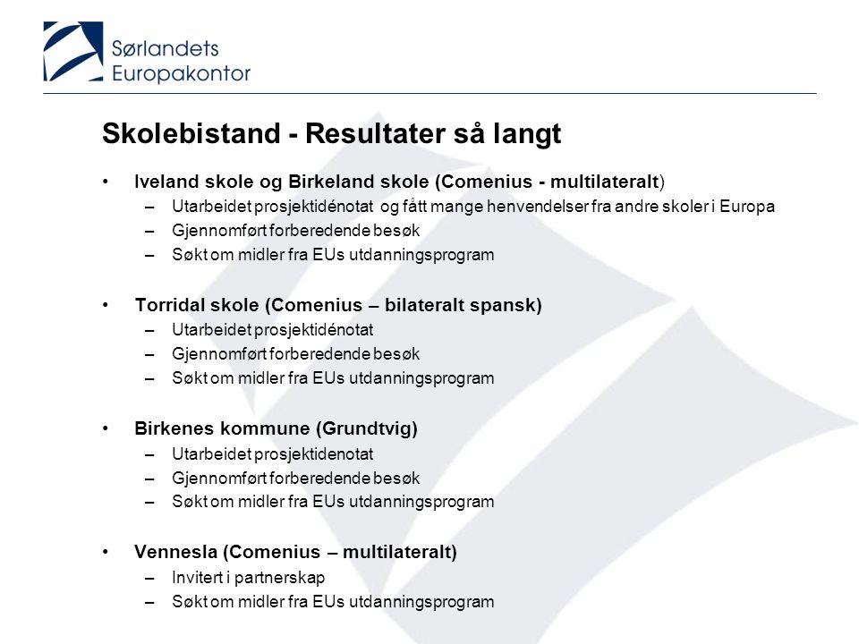 Skolebistand - Resultater så langt Iveland skole og Birkeland skole (Comenius - multilateralt) –Utarbeidet prosjektidénotat og fått mange henvendelser fra andre skoler i Europa –Gjennomført forberedende besøk –Søkt om midler fra EUs utdanningsprogram Torridal skole (Comenius – bilateralt spansk) –Utarbeidet prosjektidénotat –Gjennomført forberedende besøk –Søkt om midler fra EUs utdanningsprogram Birkenes kommune (Grundtvig) –Utarbeidet prosjektidenotat –Gjennomført forberedende besøk –Søkt om midler fra EUs utdanningsprogram Vennesla (Comenius – multilateralt) –Invitert i partnerskap –Søkt om midler fra EUs utdanningsprogram