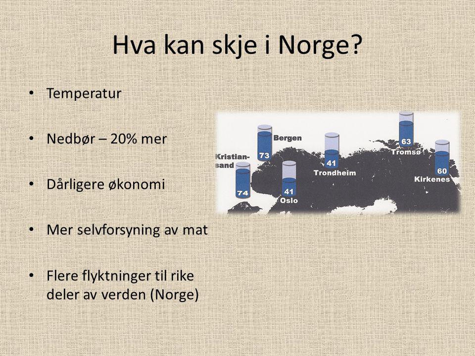 Hva kan skje i Norge? Temperatur Nedbør – 20% mer Dårligere økonomi Mer selvforsyning av mat Flere flyktninger til rike deler av verden (Norge)