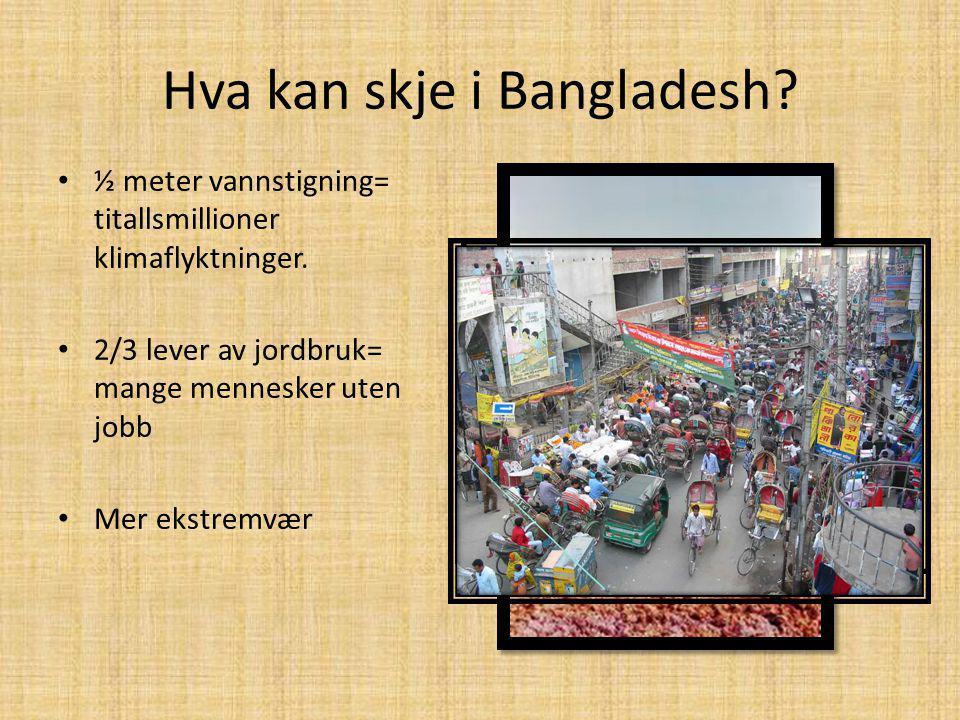 Hva kan skje i Bangladesh? ½ meter vannstigning= titallsmillioner klimaflyktninger. 2/3 lever av jordbruk= mange mennesker uten jobb Mer ekstremvær