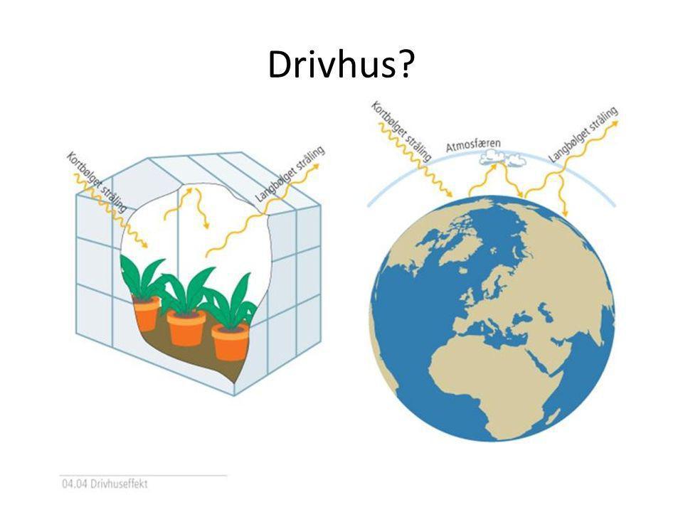 Drivhus?