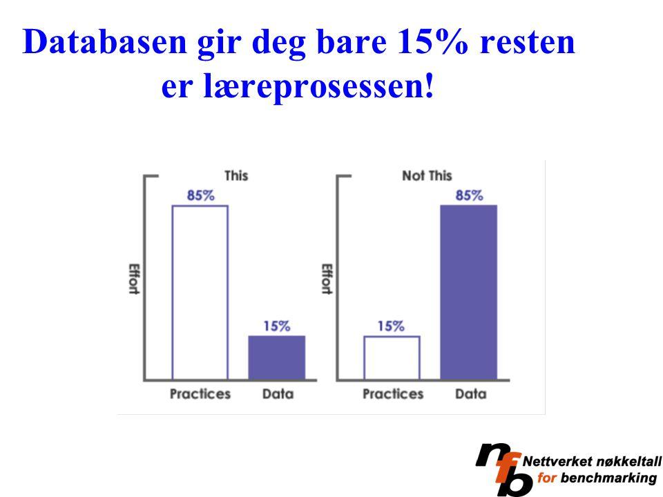 Databasen gir deg bare 15% resten er læreprosessen!