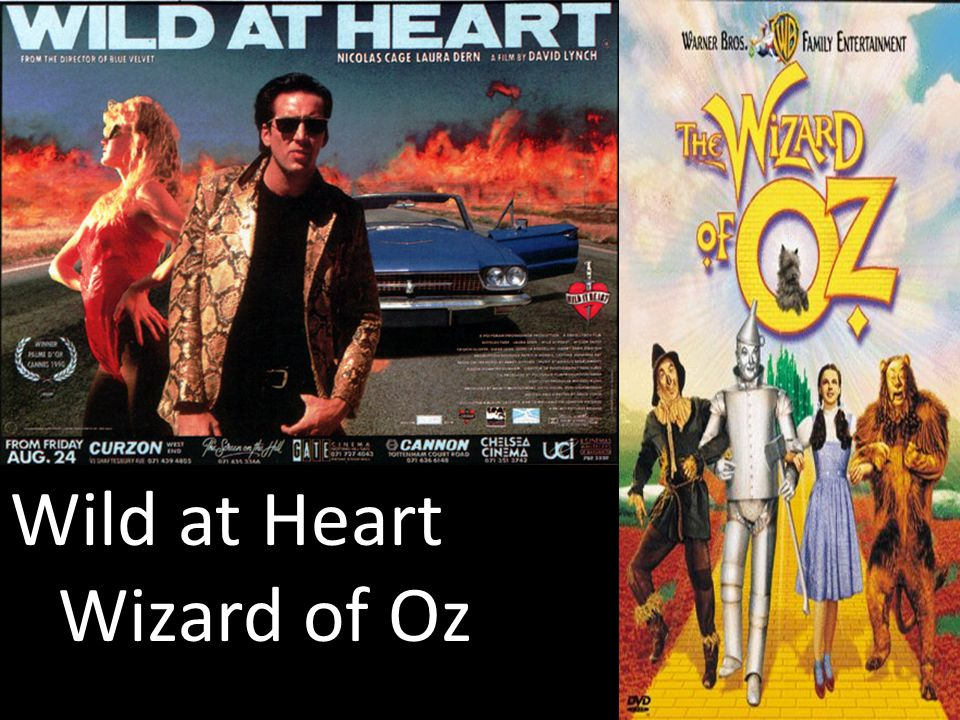 Wild at Heart Wizard of Oz