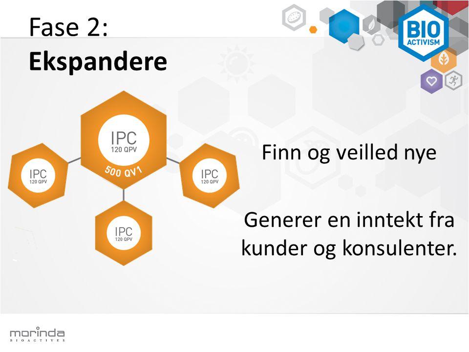 Fase 2: Ekspandere Finn og veilled nye Generer en inntekt fra kunder og konsulenter.